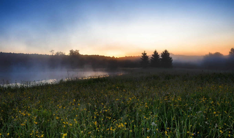 утро, туман, река, landscape, поле,