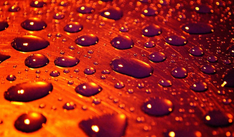 капли, drops, water, дождь, цветы, макро, страницы, открытки, фоны,