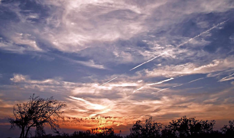 небо, облаками, sunset, облака, деревья, scenery, природа,