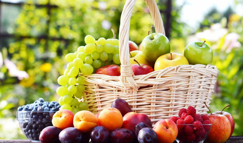 яблоки, еда, фрукты, сливы, виноград,