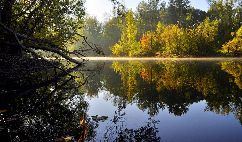 утро, вода, отражение, природа, деревья, гладь, озеро,