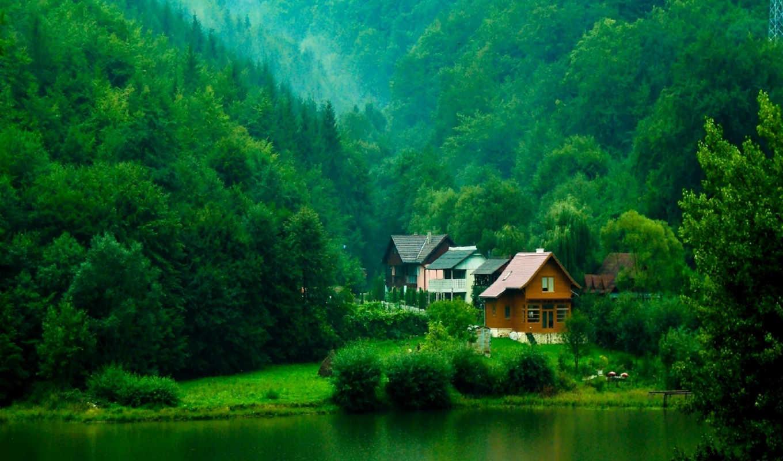 деревья, кусты, река, домики, зелень, лес, картинка, картинку, houses, free, full,
