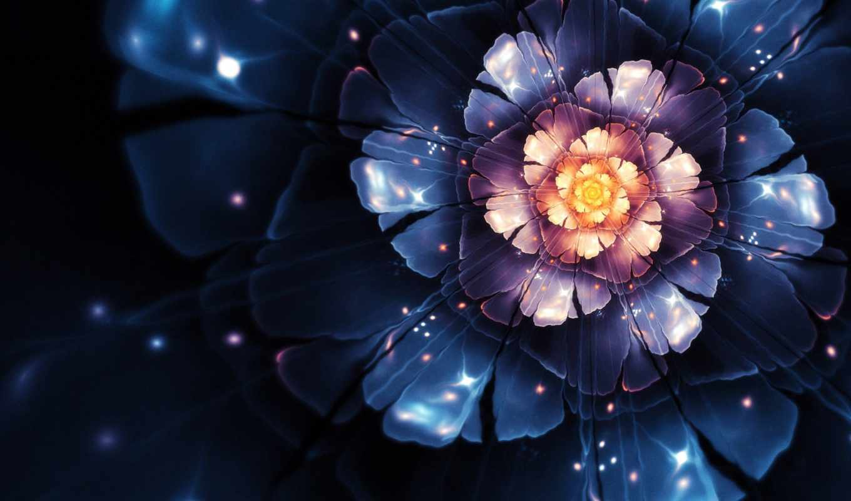 cvety, цветы, розовый, firefox, магия, банка,