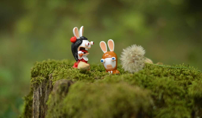 кролики, пень, мох, одуванчик, макро,
