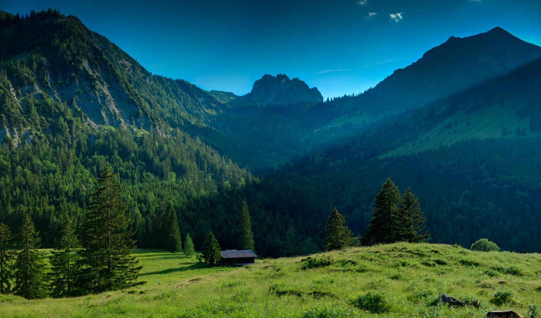 горы, лес, mountains, деревя, трава, природа, landscape, небо, зелёный,