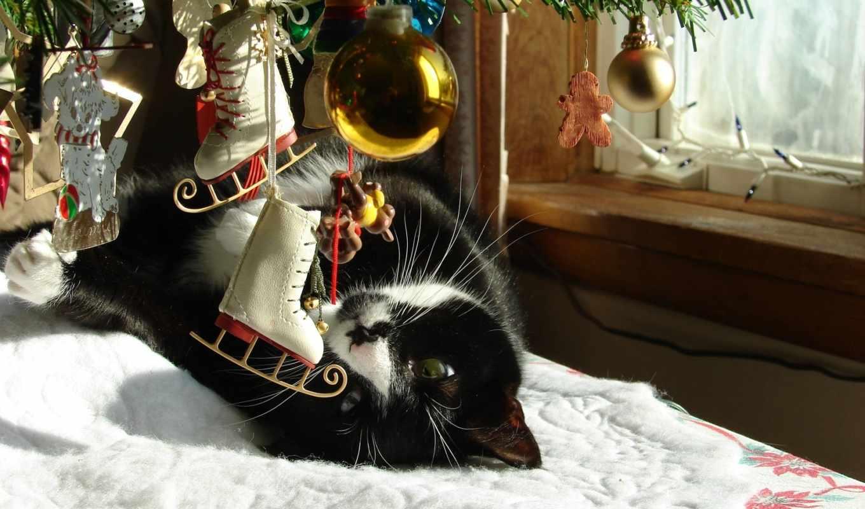 елка, кот, новогодние, коты, кошки, животные, новый, год, christmas, дек, часть, чтобы, under,