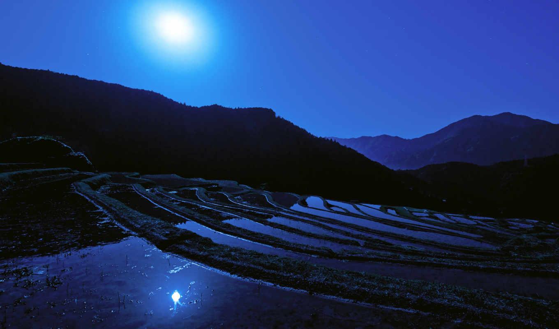 ночь, japanese, япония, луна, рисовое, поле,