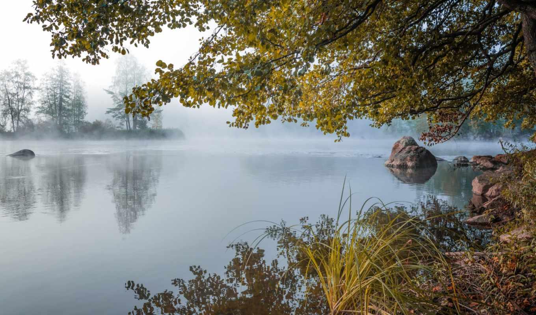 день, красиво, просыпается, туман, мар, цитата, информация, matrioshka, природа, интересное, яndex,