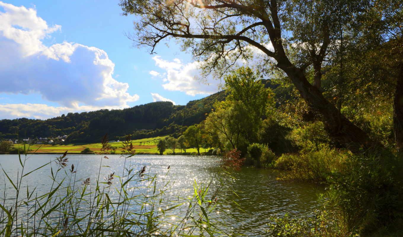 merfeld, германия, пейзаж, деревья, река, реки, картинка, природа,