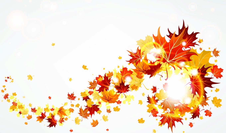 осень, листья, желтые,