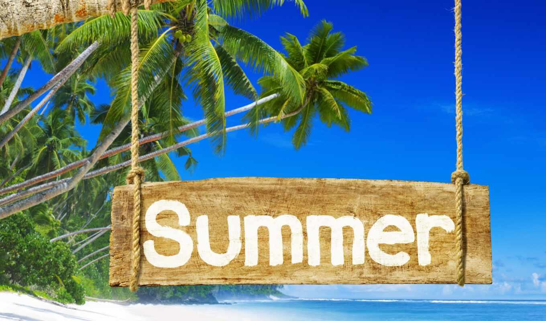 summer, море, отдых, пляж, пальмы, клипарт, travel, вектор, лето, надпись
