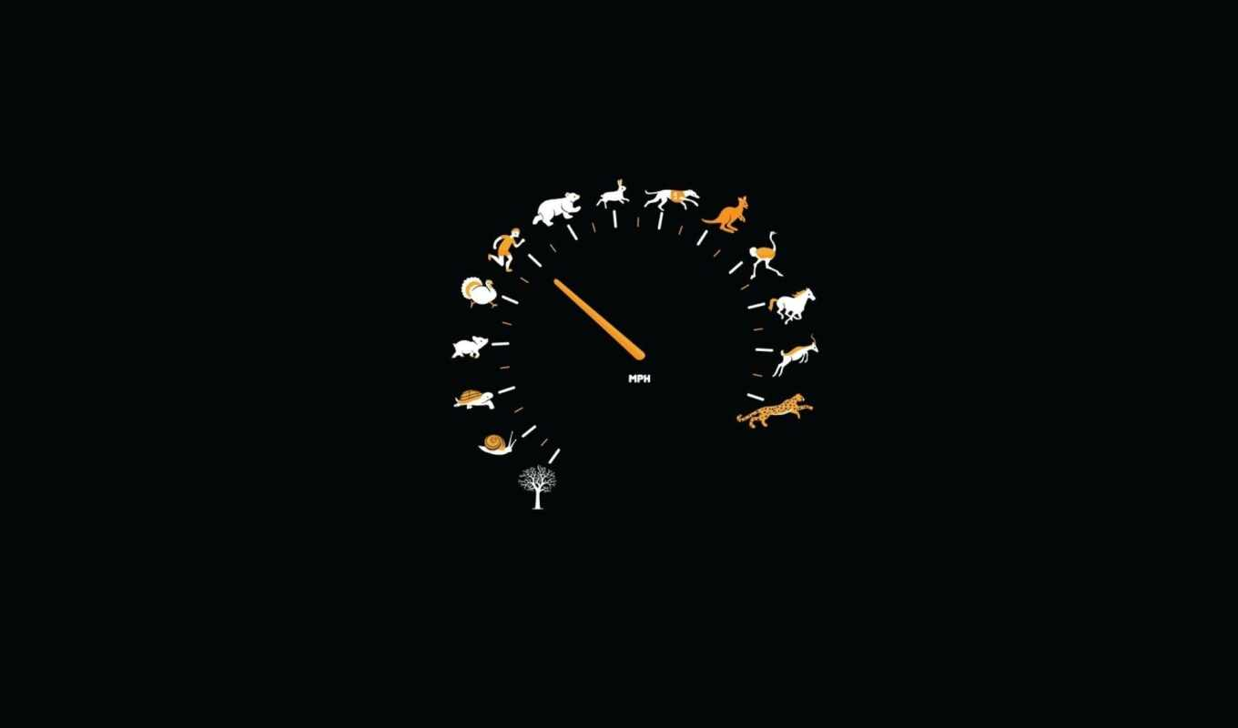 speedometer, wallpaper, wallpapers, for, mph, spee
