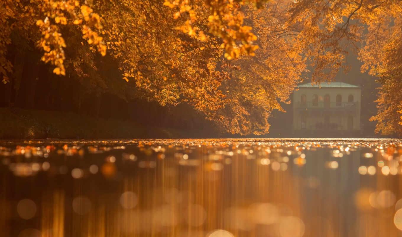 природа, парк, осень, деревья, мост, пруд, красиво