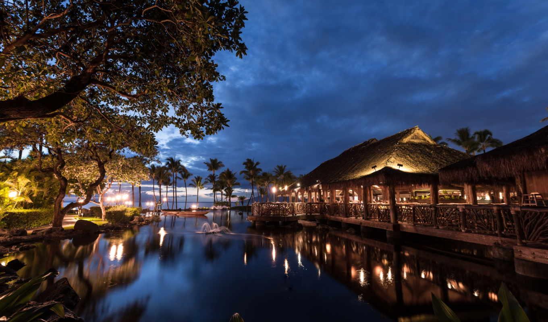 hawaii, свет, ночь, взгляд, море, пальмы, states, город, united,