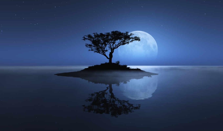 дерево, остров, небо, зарегистрируйтесь, войдите, contact,