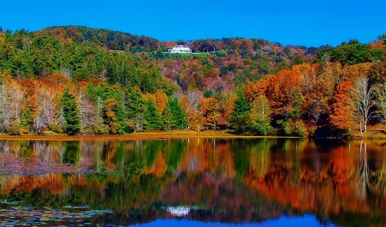 осень, лес, озеро, деревья, landscape, река,