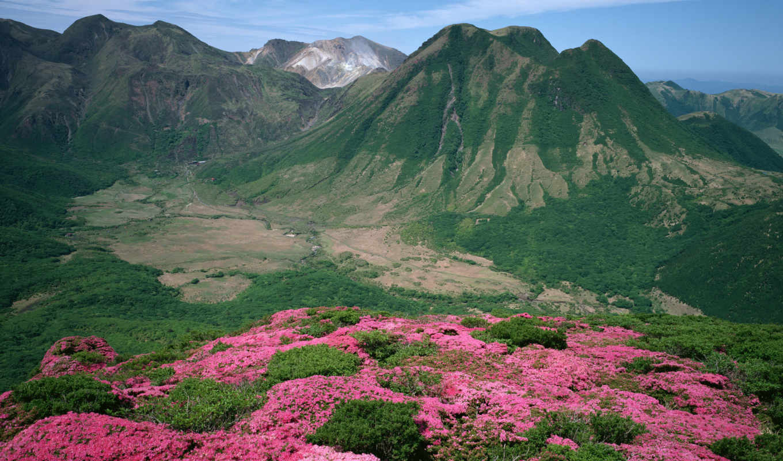 горы, природа, природы, гор, artist, лес, фотограф, грн, better, цена, красавица,