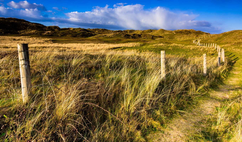 landscape, дек, free, много, sunlight,