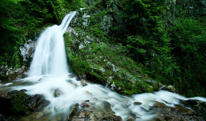 водопад, зелень, лес, природа, камни, вода, ручей, деревья, растения, поток, cool,