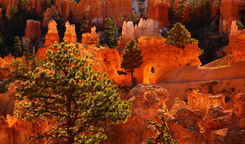 природа, картинка, usa, парки, каньон,