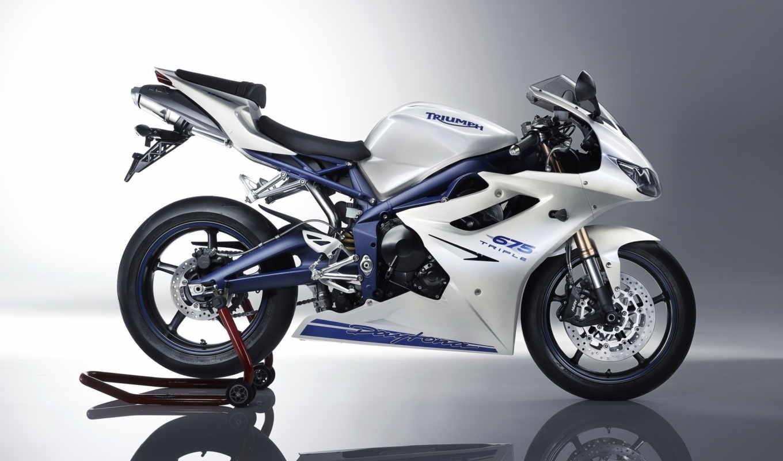 triumph, daytona, мотоцикл, машины, спортбайк, дайтона, белый, картинка,
