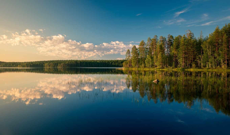 финляндия, озеро, fore, лес