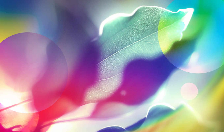 leaves, frunze, multicolore, bunte, desktop, wallpapere, blätter, design, macro, collection, free, hintergrundbilder, frei, art, tags, fotos, resolution, colored,