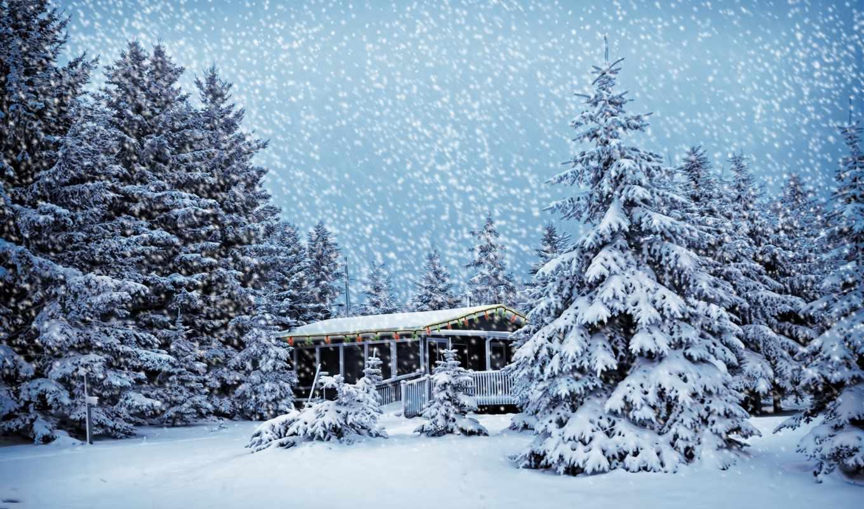 лесу, зимнем, house,