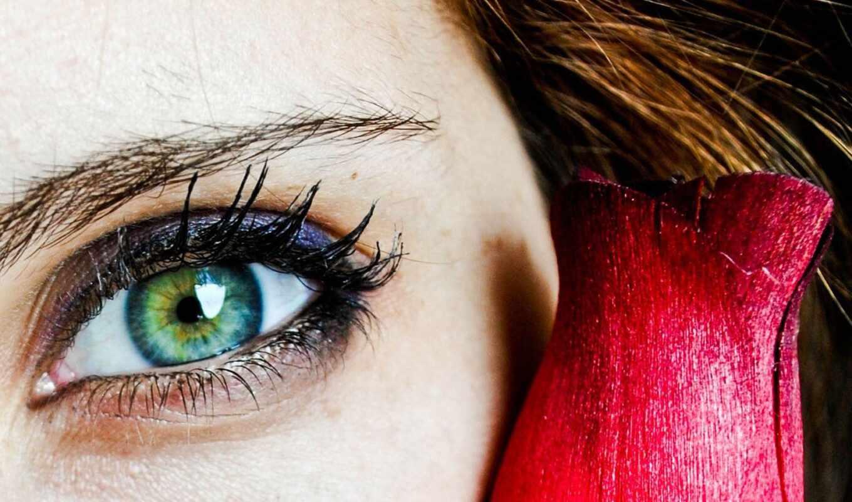глаз, nikogii, макияж, shadow, sirbic, home, amaze, косметика