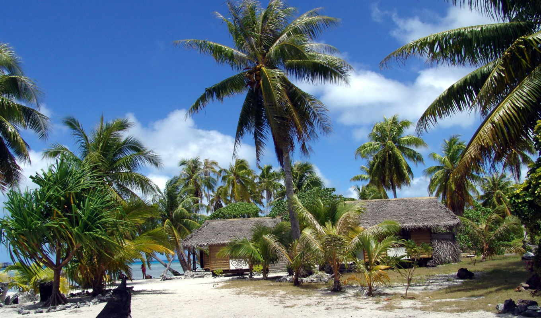 wallpaper, пальмы, wallpapers, полинезия, пляж, французкая, turismo, tropical, beach, hd, maldives, nature, курса, природа, best,