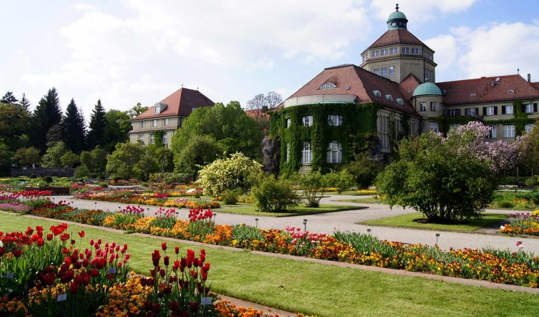 botanical, munich, германия, сады,