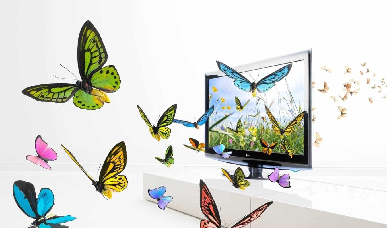 бабочки, телевизоре, графика, светлая, банка, бесплатные, монитор, комната,