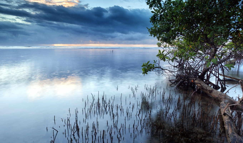 небо, озеро, деревья, пейзаж, картинка,