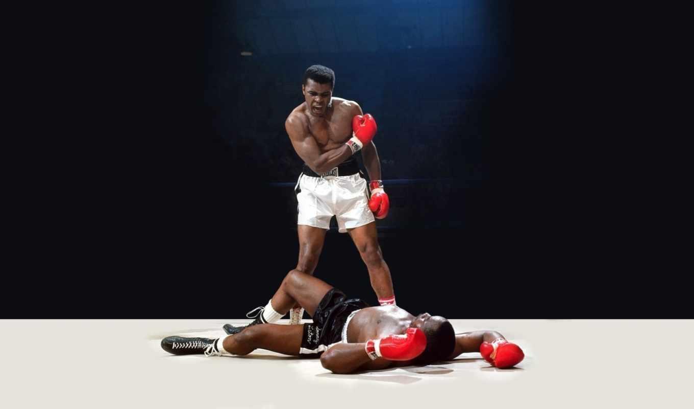 картинку, свет, удар, photos, спорт, ринг, бокс, али, мохаммед, ali, злость, легенда, muhammad, boxing, нокаут, боксер,