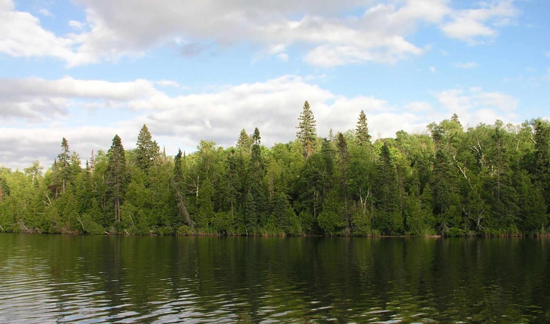 природа, дикая, картинках, клипарт, пейзажи -, full, качественные, красивые,