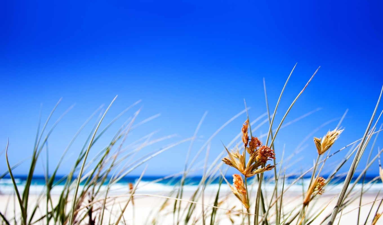 пляж, free, desktop, summer, небо, blue,