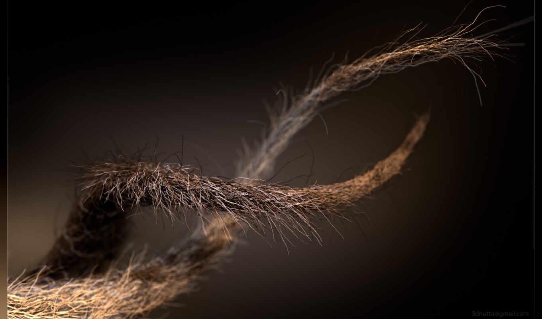 fibers, kuidut,