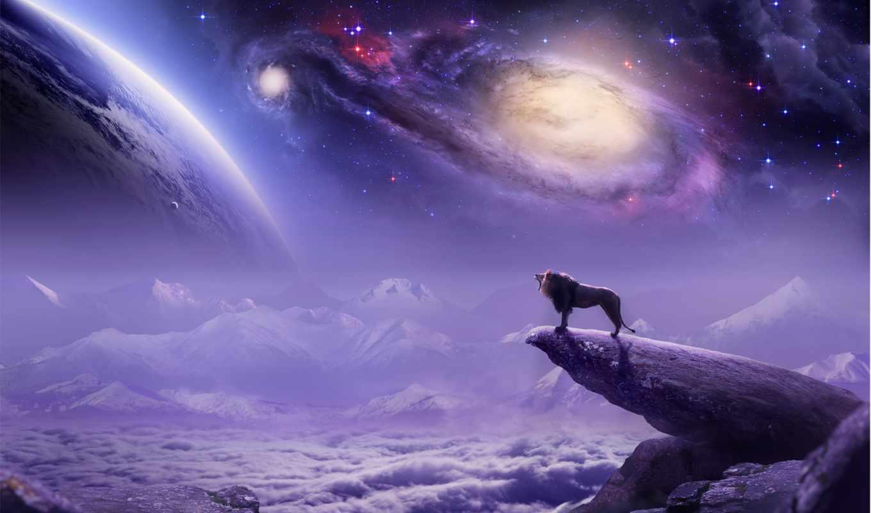 космос, art, графика, львы, животные, lion,