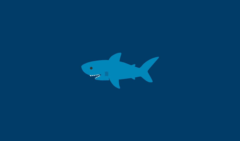 минимализм, акула, акулы, вода, океан, море, креатив, картинка, cartoon, картинку,
