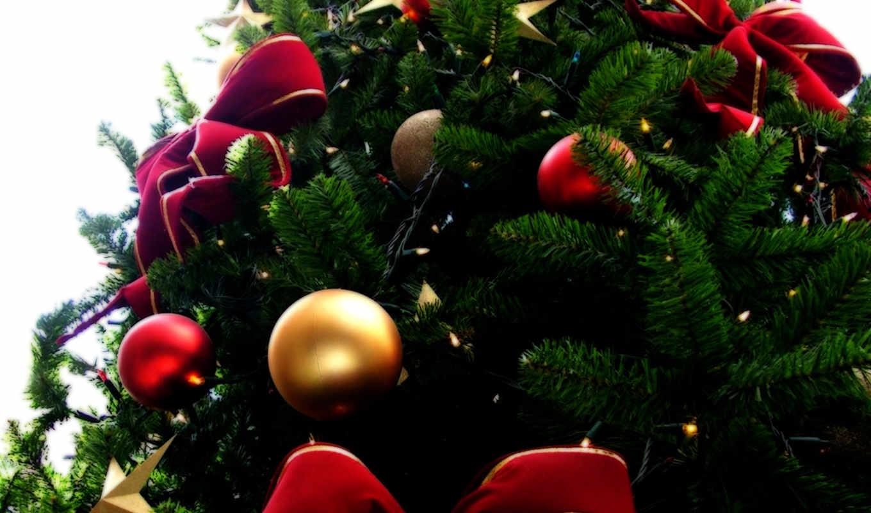 christmas, کریسمس, tree, natal, sa, году, this, новогодние,