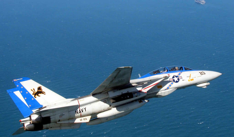 tomcat, black, lions, vf, grumman, истребитель, squadron, was,