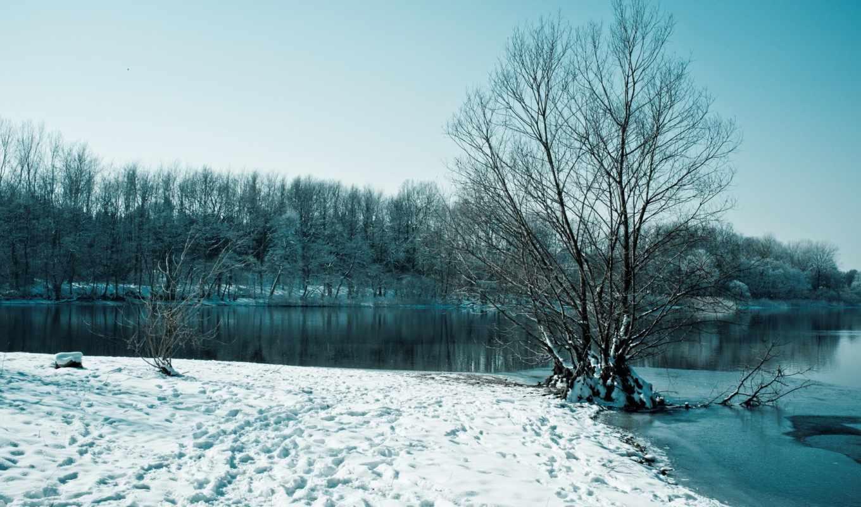 зима, снег, деревья, озеро, картинка,