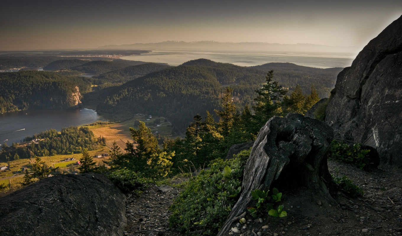 красивые, лес, пейзажи, природа, виды, заставки, ежедневно, только, горы, леса, горного, скала, trafmag, пень, камни,
