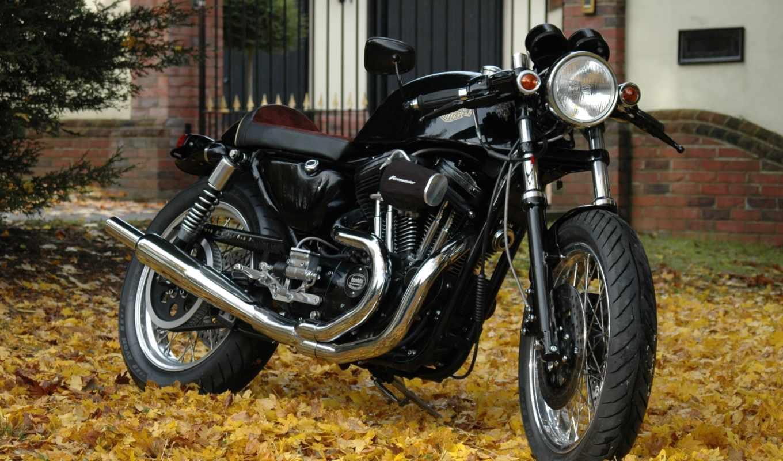 harley, davidson, мотоцикл,