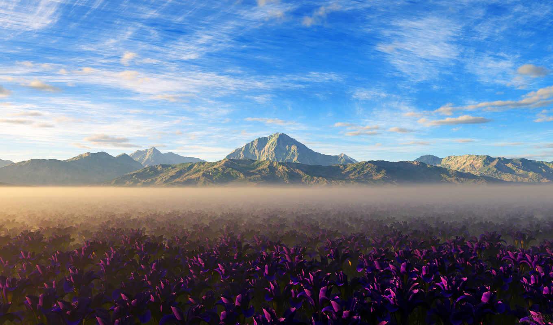 горы, вершины, browse, камни, цветы, небо, поле,