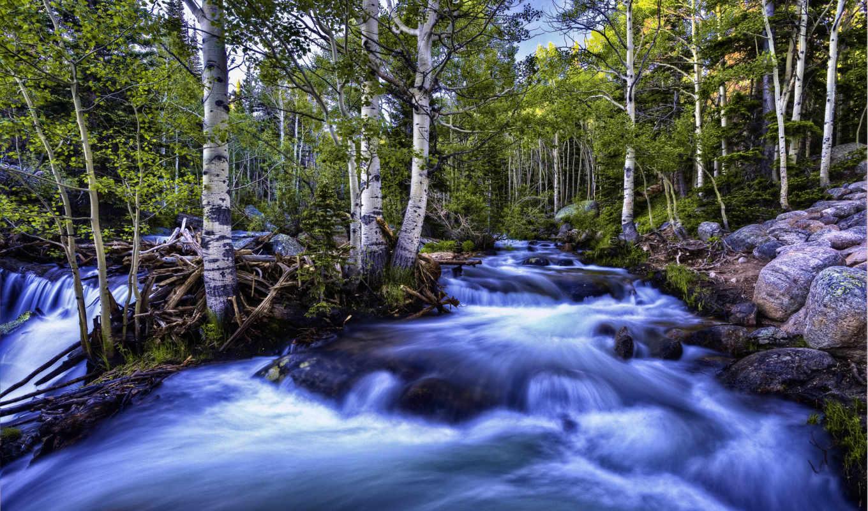 river, поток, природа, прекрасными, уголками, природы, лес, горный, березы, desktop, ней, картинка, кнопкой, save, правой, картинку, выберите, русло, image, may, разрешением, мыши, life, скачивания, l