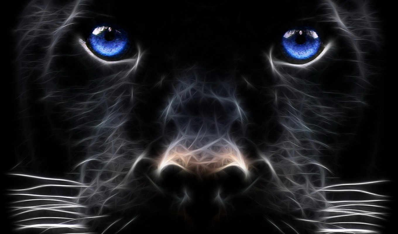 desktop, black, panther, digital, design, abstract,