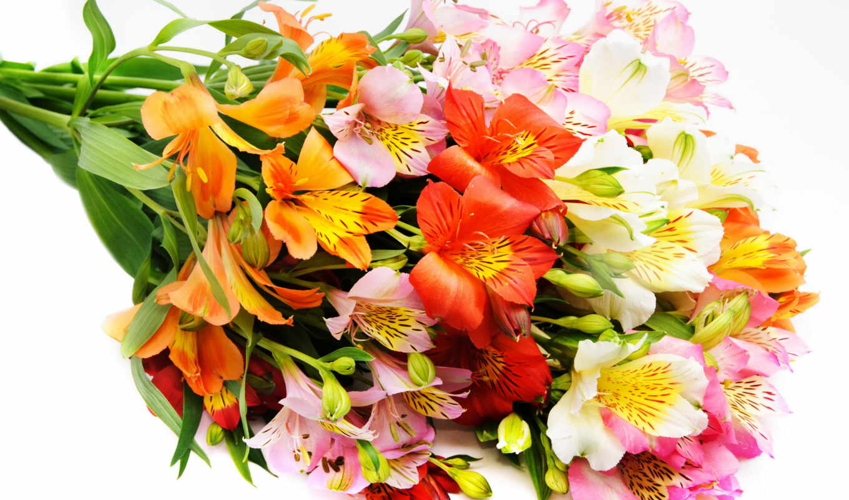 Скачать бесплатно букеты цветов на телефон 4