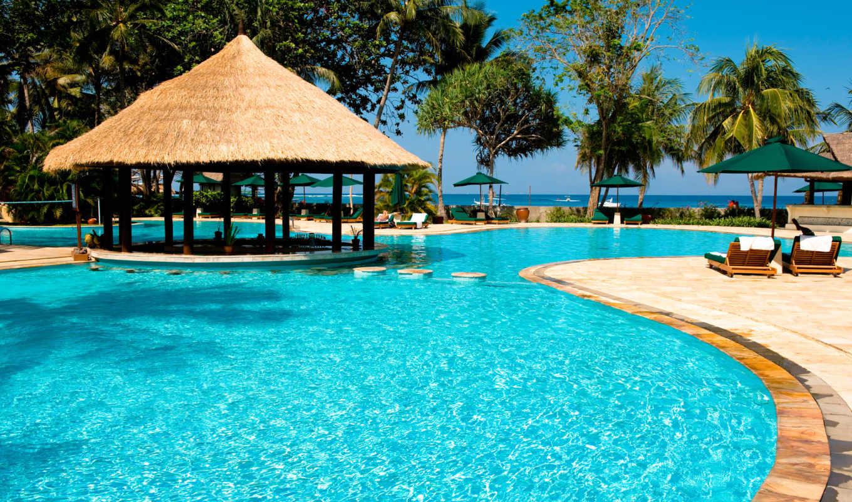 resort, бассейн, красивый, bar, exotic, коровы, особняк, февр,