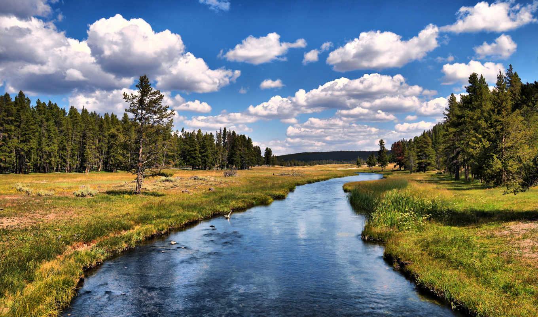 река, лес, красивые, деревья, реки, природа,